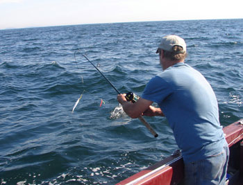 Welcome to fishermen 39 s voice for Saltwater fishing in maine